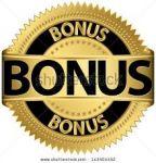 Program bonusowy
